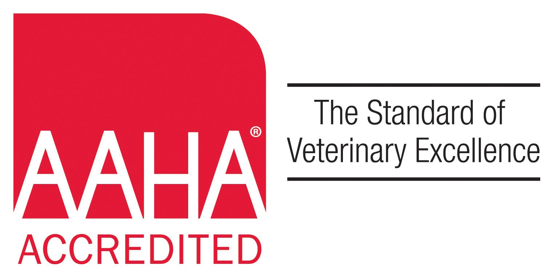 Home | Veterinarian in Staten Island, NY | Eltingville